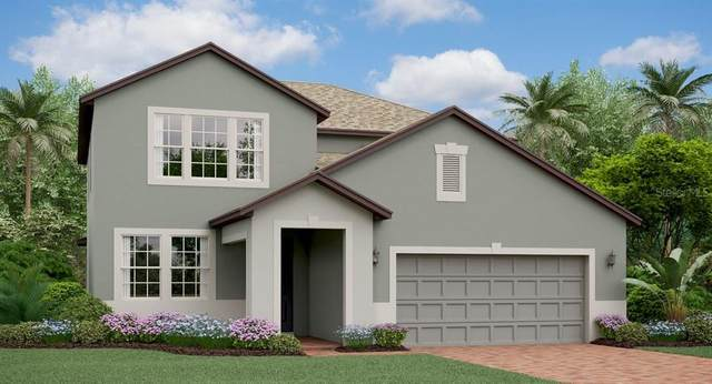 8692 Capstone Ranch Drive, New Port Richey, FL 34655 (MLS #T3234874) :: Griffin Group