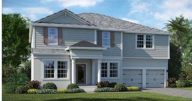 11394 History Avenue, Orlando, FL 32832 (MLS #T3234906) :: Premium Properties Real Estate Services