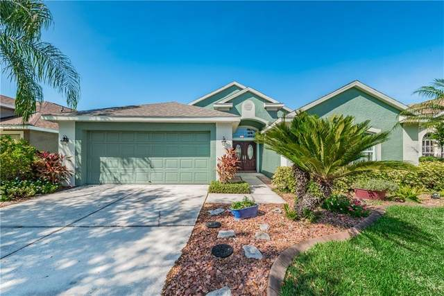 10343 Lightner Bridge Drive, Tampa, FL 33626 (MLS #T3234928) :: Cartwright Realty
