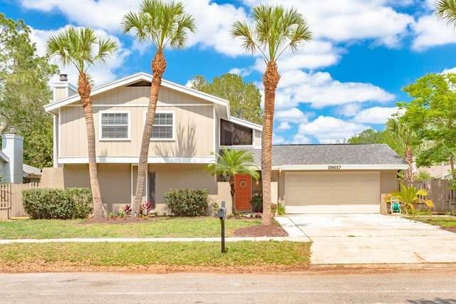 15617 Bear Creek Drive, Tampa, FL 33624 (MLS #T3234977) :: Lockhart & Walseth Team, Realtors