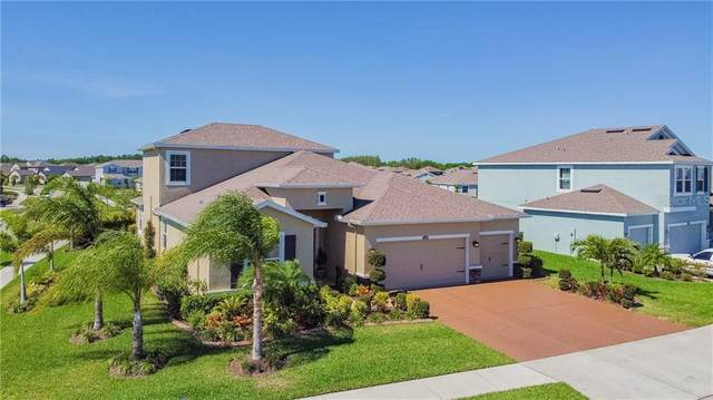 32394 Pinson Lane, Wesley Chapel, FL 33543 (MLS #T3234981) :: Griffin Group