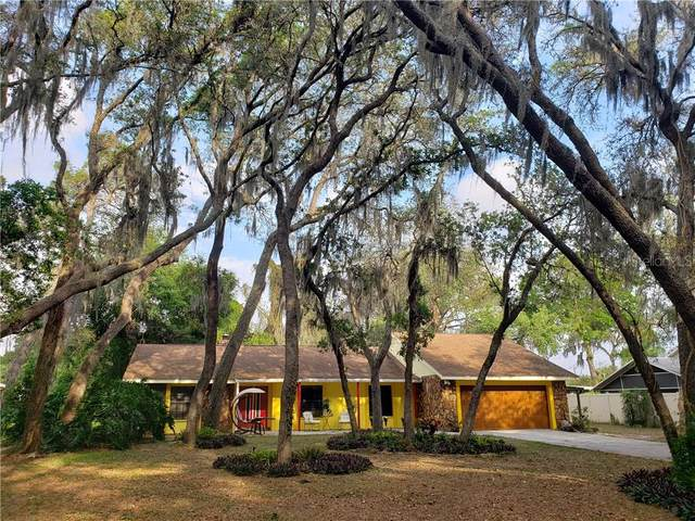 8614 Stoner Hills Drive, Riverview, FL 33569 (MLS #T3234998) :: Lovitch Group, Keller Williams Realty South Shore