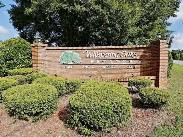 35041 Smoketree Lane, Ridge Manor, FL 33523 (MLS #T3235002) :: Rabell Realty Group