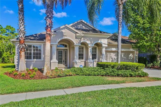 10738 Deerberry Drive, Land O Lakes, FL 34638 (MLS #T3235005) :: Sarasota Home Specialists