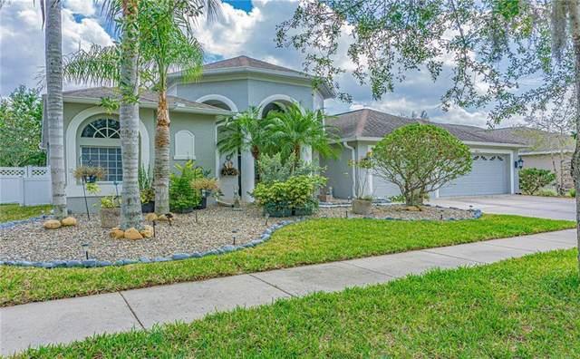 20824 Cedar Bluff Place, Land O Lakes, FL 34638 (MLS #T3235017) :: Premier Home Experts