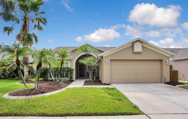 11303 Clayridge Drive, Tampa, FL 33635 (MLS #T3235092) :: Armel Real Estate