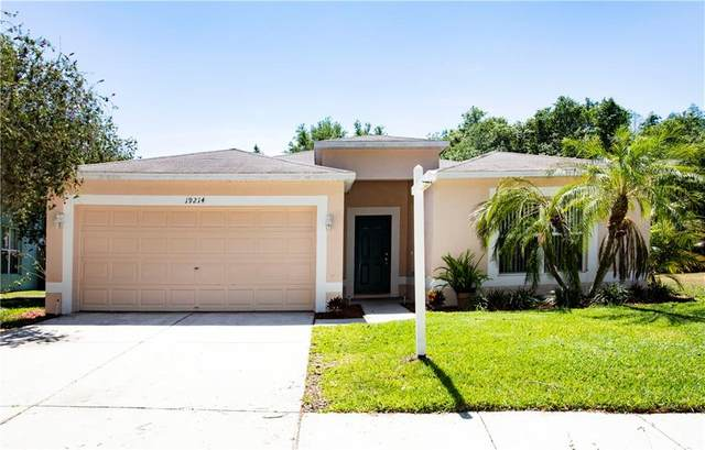 19214 Wood Sage Drive, Tampa, FL 33647 (MLS #T3235176) :: Team Bohannon Keller Williams, Tampa Properties