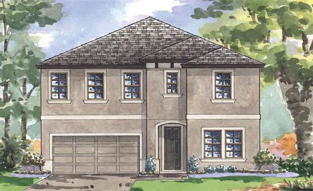 14609 Red Castle Avenue, Lithia, FL 33547 (MLS #T3235181) :: Team Bohannon Keller Williams, Tampa Properties