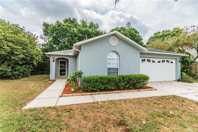 7208 Waxwing Drive, New Port Richey, FL 34653 (MLS #T3235189) :: Premier Home Experts