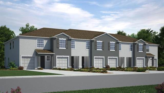 8718 Falling Blue Place, Riverview, FL 33578 (MLS #T3235215) :: Burwell Real Estate