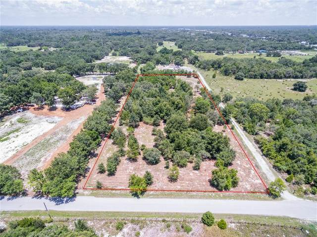 206 Suncoast Boulevard, Spring Hill, FL 34608 (MLS #T3235254) :: Griffin Group