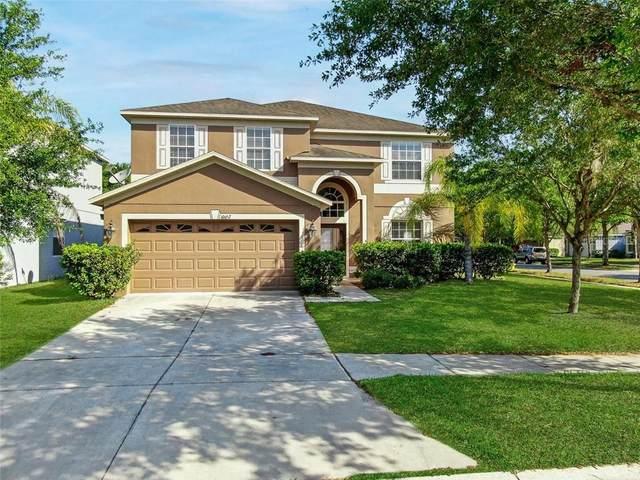 10652 Lucaya Drive, Tampa, FL 33647 (MLS #T3235282) :: Dalton Wade Real Estate Group