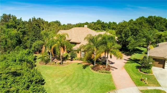 3130 Olivia Court, Land O Lakes, FL 34638 (MLS #T3235299) :: Team Borham at Keller Williams Realty