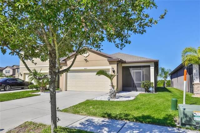 6021 Sweet Birch Drive, Riverview, FL 33578 (MLS #T3235306) :: Zarghami Group