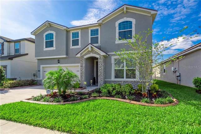 12375 Streambed Drive, Riverview, FL 33579 (MLS #T3235322) :: Premium Properties Real Estate Services