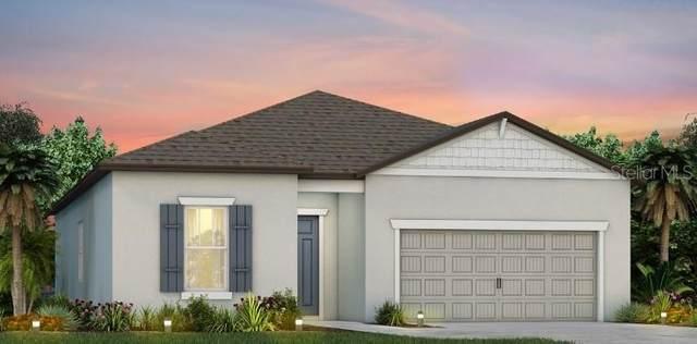 6434 SW 98TH CIRCLE, Ocala, FL 34481 (MLS #T3235328) :: Bustamante Real Estate