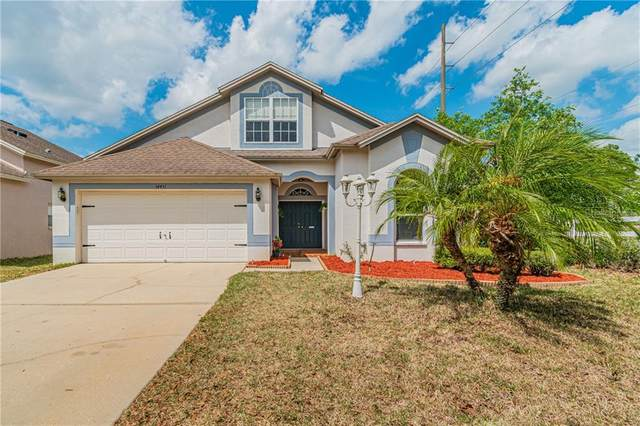 34451 Windknob Court, Wesley Chapel, FL 33545 (MLS #T3235336) :: Griffin Group