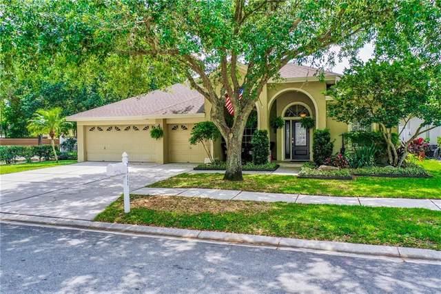 9611 Sweet Ivy Drive, Tampa, FL 33647 (MLS #T3235356) :: Team Bohannon Keller Williams, Tampa Properties