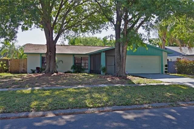 15911 Crying Wind Drive, Tampa, FL 33624 (MLS #T3235410) :: Kendrick Realty Inc