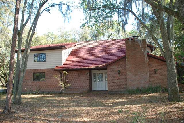 5225 W Trapnell Road, Dover, FL 33527 (MLS #T3235413) :: Lockhart & Walseth Team, Realtors