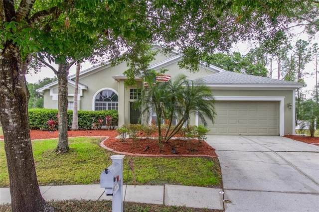 16318 Armstrong Place, Tampa, FL 33647 (MLS #T3235426) :: Team Bohannon Keller Williams, Tampa Properties