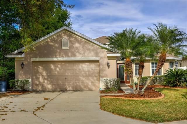 6002 Catlin Drive, Tampa, FL 33647 (MLS #T3235433) :: Team Bohannon Keller Williams, Tampa Properties