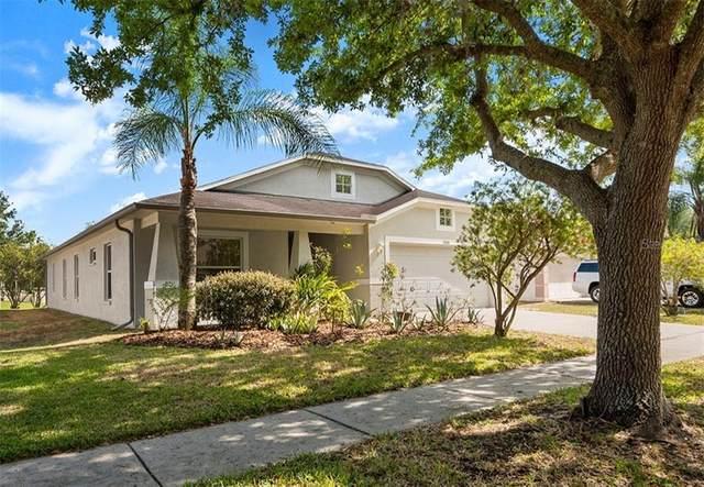 7640 Blue Spring Drive, Land O Lakes, FL 34637 (MLS #T3235435) :: Team Bohannon Keller Williams, Tampa Properties