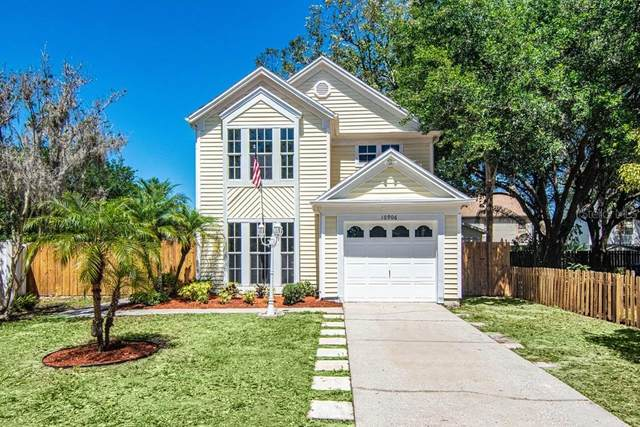 10906 Greenaire Drive, Tampa, FL 33624 (MLS #T3235438) :: Lockhart & Walseth Team, Realtors