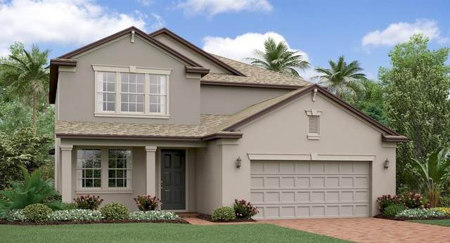 8737 Savory Walk Drive, Land O Lakes, FL 34637 (MLS #T3235461) :: Team Borham at Keller Williams Realty