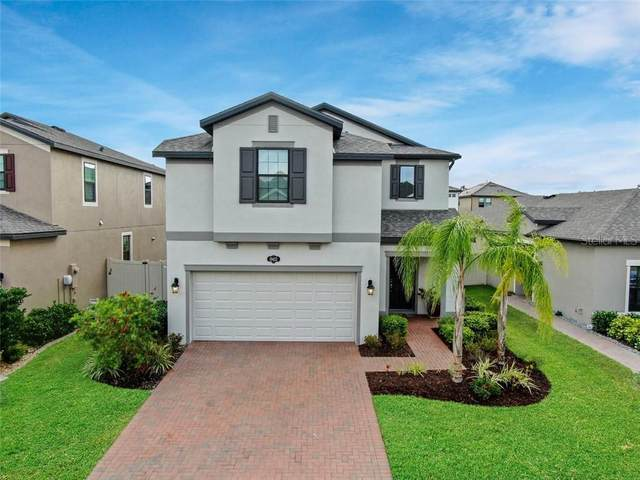 19452 Roseate Drive, Lutz, FL 33558 (MLS #T3235465) :: Team Borham at Keller Williams Realty
