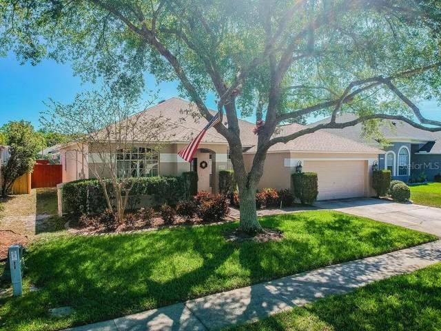 4238 Whittner Drive, Land O Lakes, FL 34639 (MLS #T3235471) :: Team Bohannon Keller Williams, Tampa Properties