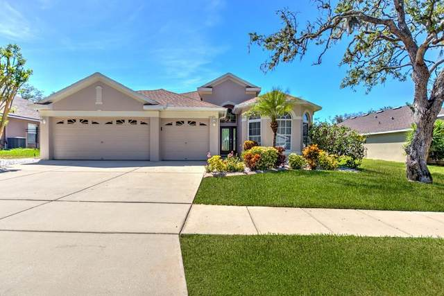 11125 Bridgecreek Drive, Riverview, FL 33569 (MLS #T3235478) :: Lovitch Group, Keller Williams Realty South Shore