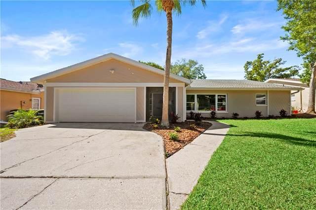 3131 Hillside Lane, Safety Harbor, FL 34695 (MLS #T3235484) :: Cartwright Realty