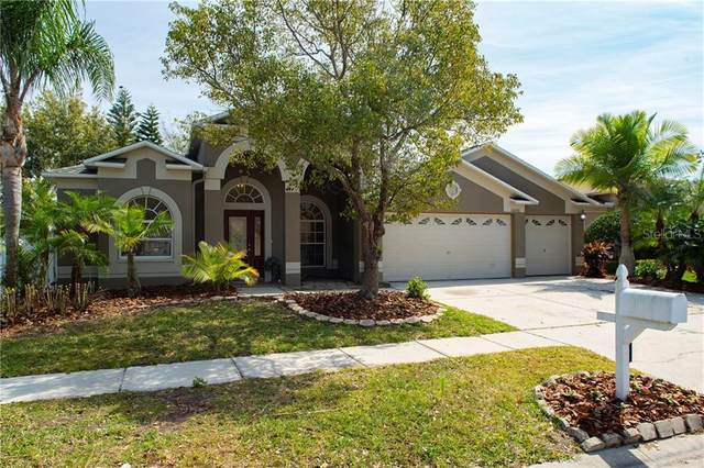 16203 Muirfield Drive, Odessa, FL 33556 (MLS #T3235537) :: Griffin Group