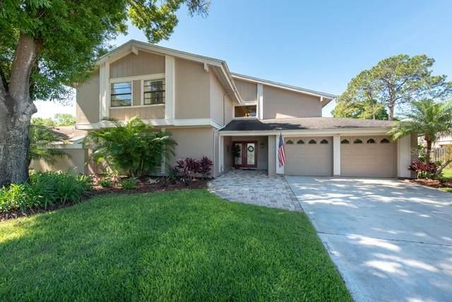 14813 Clarendon Drive, Tampa, FL 33624 (MLS #T3235539) :: Lockhart & Walseth Team, Realtors