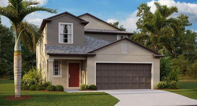 7312 Tiger Trail Court, Sun City Center, FL 33573 (MLS #T3235541) :: Dalton Wade Real Estate Group