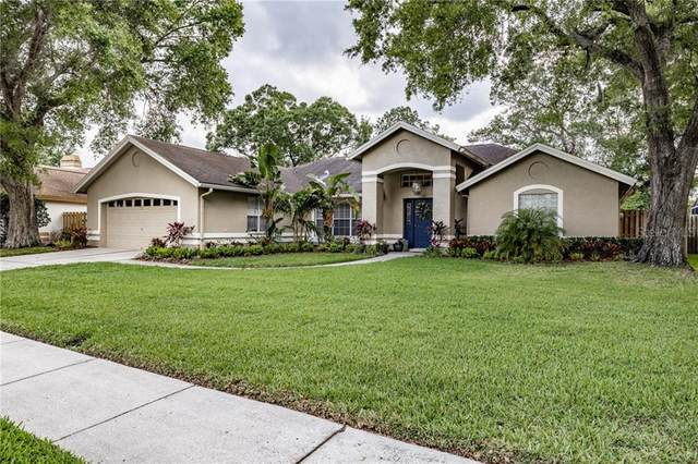 16702 Windsor Park Drive, Lutz, FL 33549 (MLS #T3235551) :: Team Bohannon Keller Williams, Tampa Properties