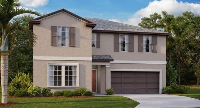 6822 King Creek Drive, Sun City Center, FL 33573 (MLS #T3235555) :: Dalton Wade Real Estate Group