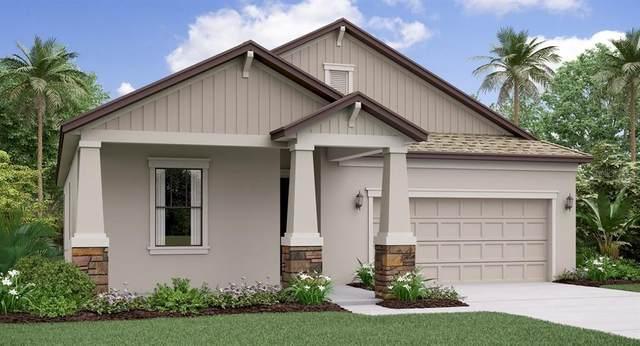 7329 Bagley Cove Court, Sun City Center, FL 33573 (MLS #T3235562) :: Dalton Wade Real Estate Group