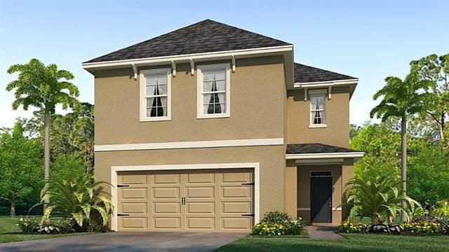 3063 Suncoast Blend Drive, Odessa, FL 33556 (MLS #T3235563) :: Carmena and Associates Realty Group
