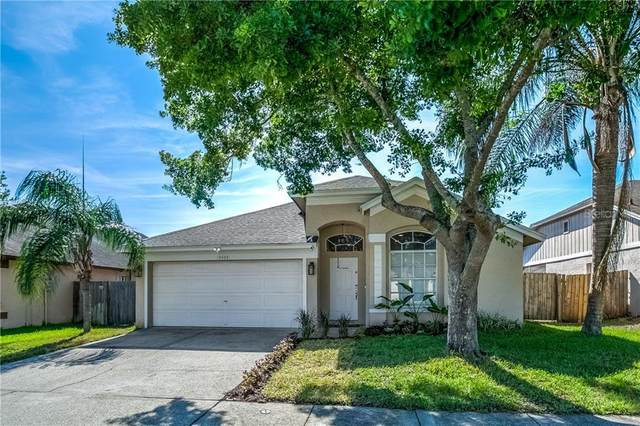 13404 Roslyn Place, Tampa, FL 33626 (MLS #T3235582) :: Cartwright Realty