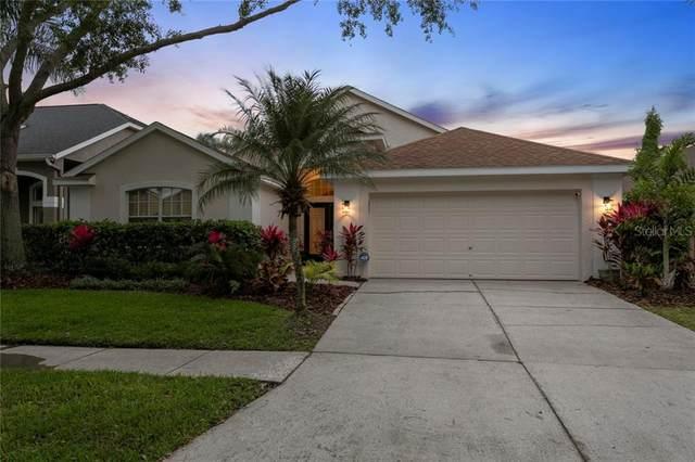 10361 Lightner Bridge Drive, Tampa, FL 33626 (MLS #T3235596) :: Lovitch Group, Keller Williams Realty South Shore