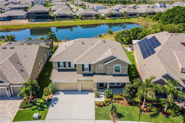 6314 Havensport Drive, Apollo Beach, FL 33572 (MLS #T3235600) :: Lovitch Group, Keller Williams Realty South Shore