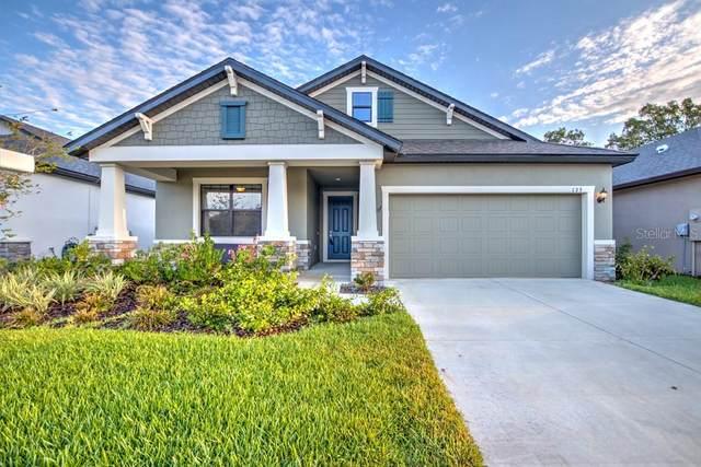 133 Elina Sky Drive, Seffner, FL 33584 (MLS #T3235635) :: Zarghami Group
