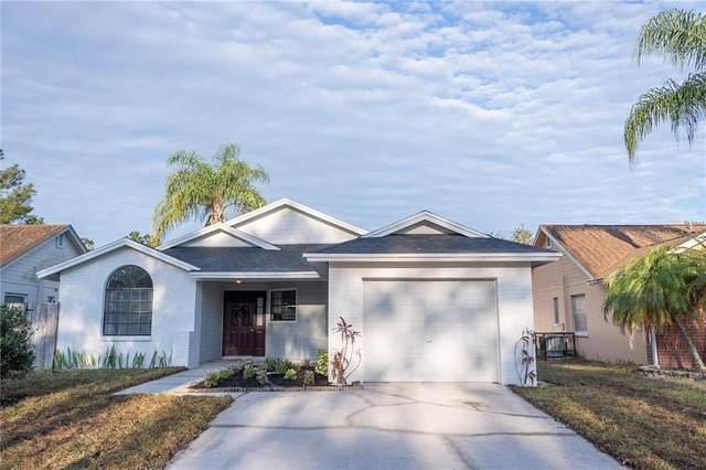 12810 Millridge Forest Street, Tampa, FL 33624 (MLS #T3235637) :: Lockhart & Walseth Team, Realtors