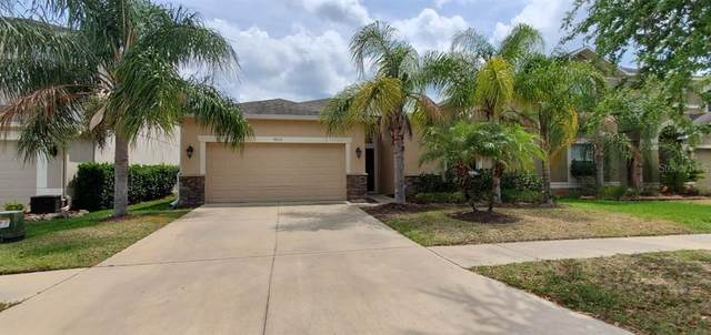 3506 Marmalade Court, Land O Lakes, FL 34638 (MLS #T3235661) :: Remax Alliance