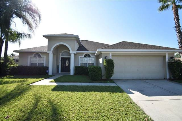 19701 Spring Willow Court, Odessa, FL 33556 (MLS #T3235672) :: Carmena and Associates Realty Group