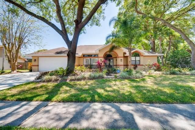 3819 Buckingham Loop Drive, Valrico, FL 33594 (MLS #T3235681) :: Dalton Wade Real Estate Group