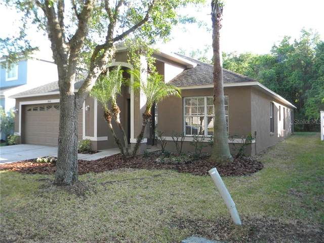 10436 Lucaya Drive, Tampa, FL 33647 (MLS #T3235715) :: Team Bohannon Keller Williams, Tampa Properties