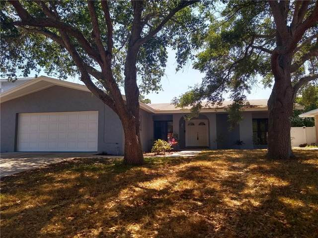 1573 Linwood Drive, Clearwater, FL 33755 (MLS #T3235722) :: Lovitch Group, Keller Williams Realty South Shore